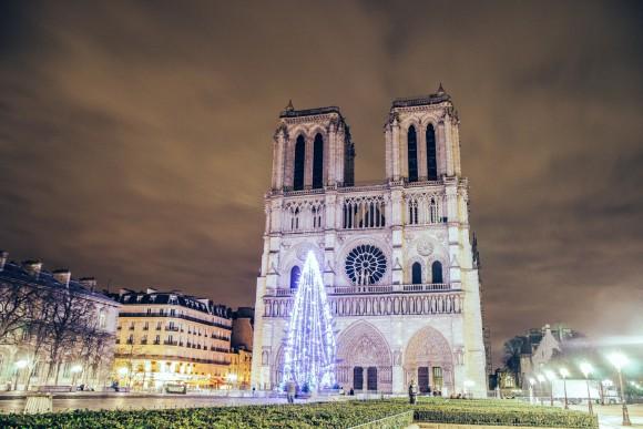 Notre Dame - Desert in Paris - © Genaro Bardy