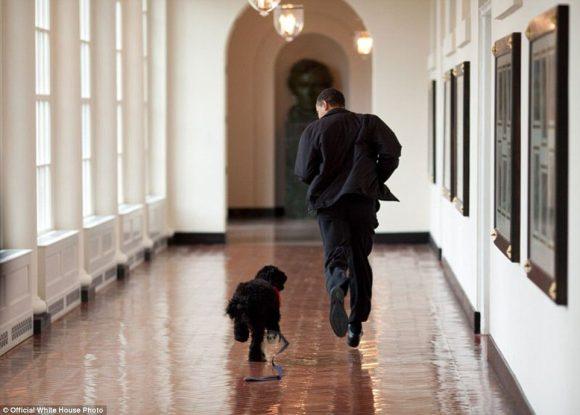 pete_souza_best_of_barack_obama_photos_usa_34